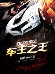 QQ飞车之车王之王