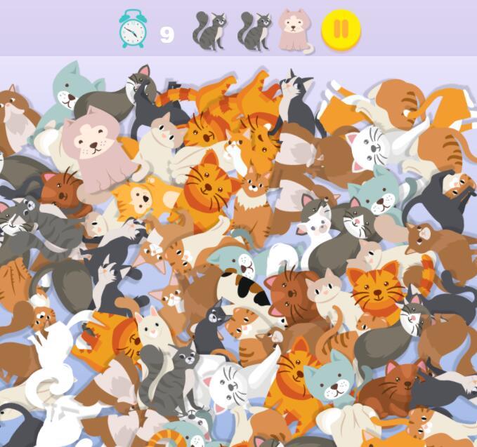 找出那些猫