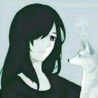 ❀文豪野犬◇