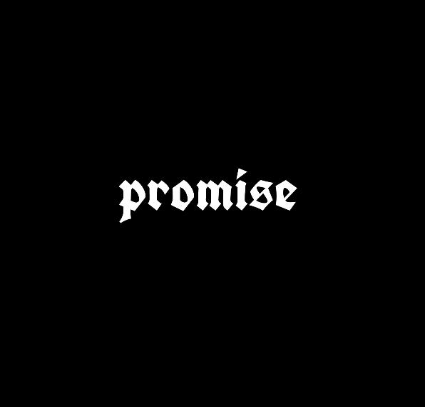Promise工作室