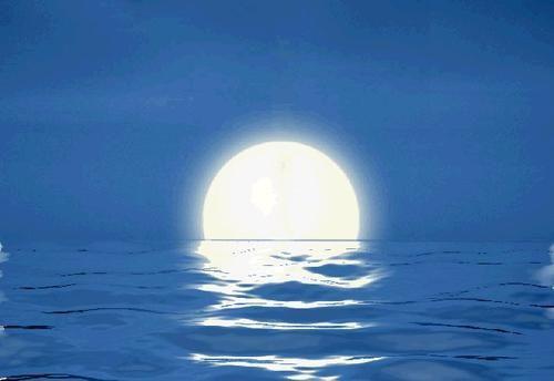 超级白月光