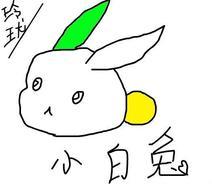 小白兔取名为:月兔