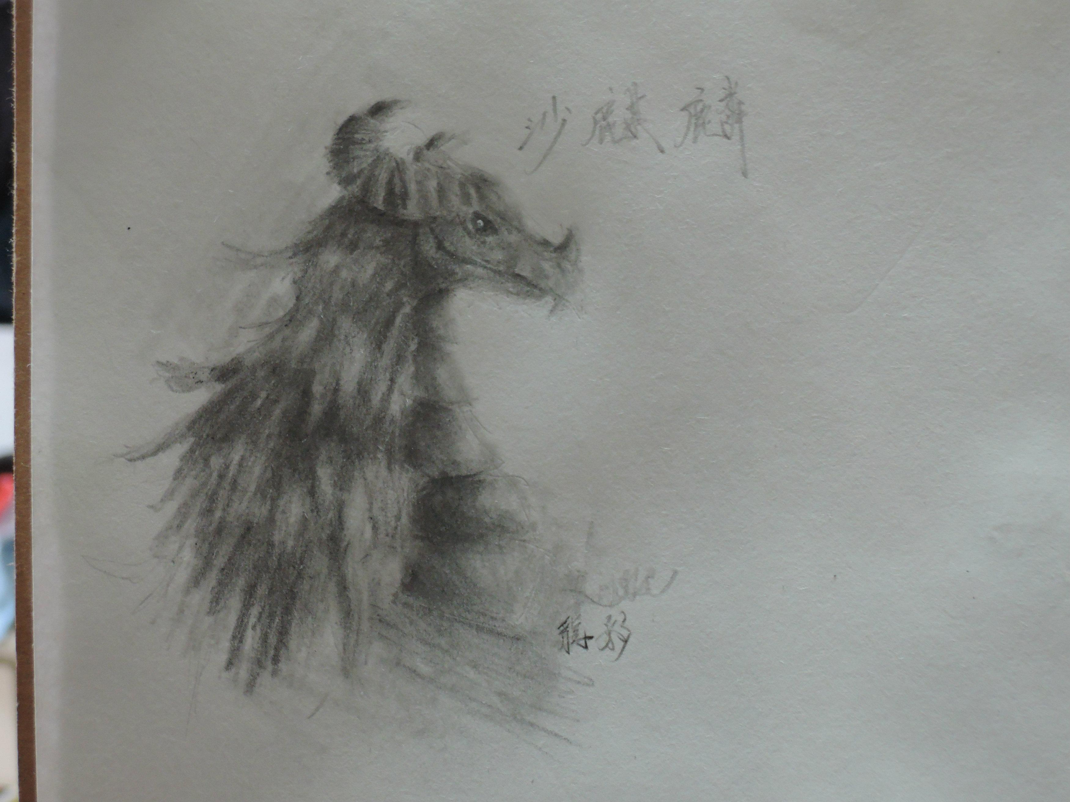 【龙影】 手绘图楼 长期更新