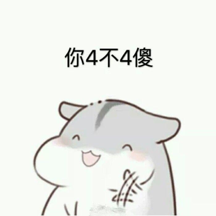 pet丶阮卿°仓鼠表情包