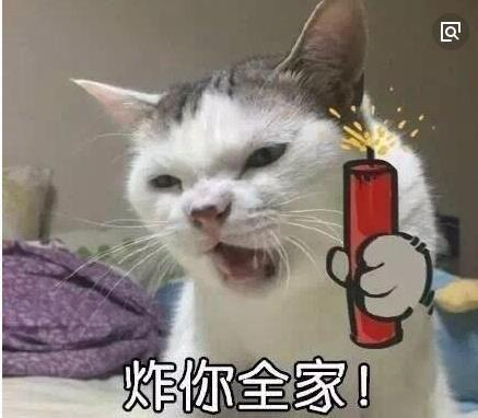 【缘华】带字动物类表情包