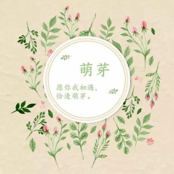 【萌芽|飘零】魔王快打视频集